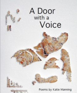 A-Door-with-a-Voice-Cover-250x300
