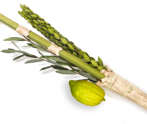 Sukkot: Dancing over the abyss