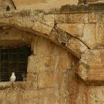 Tisha b'Av – Learning from the past